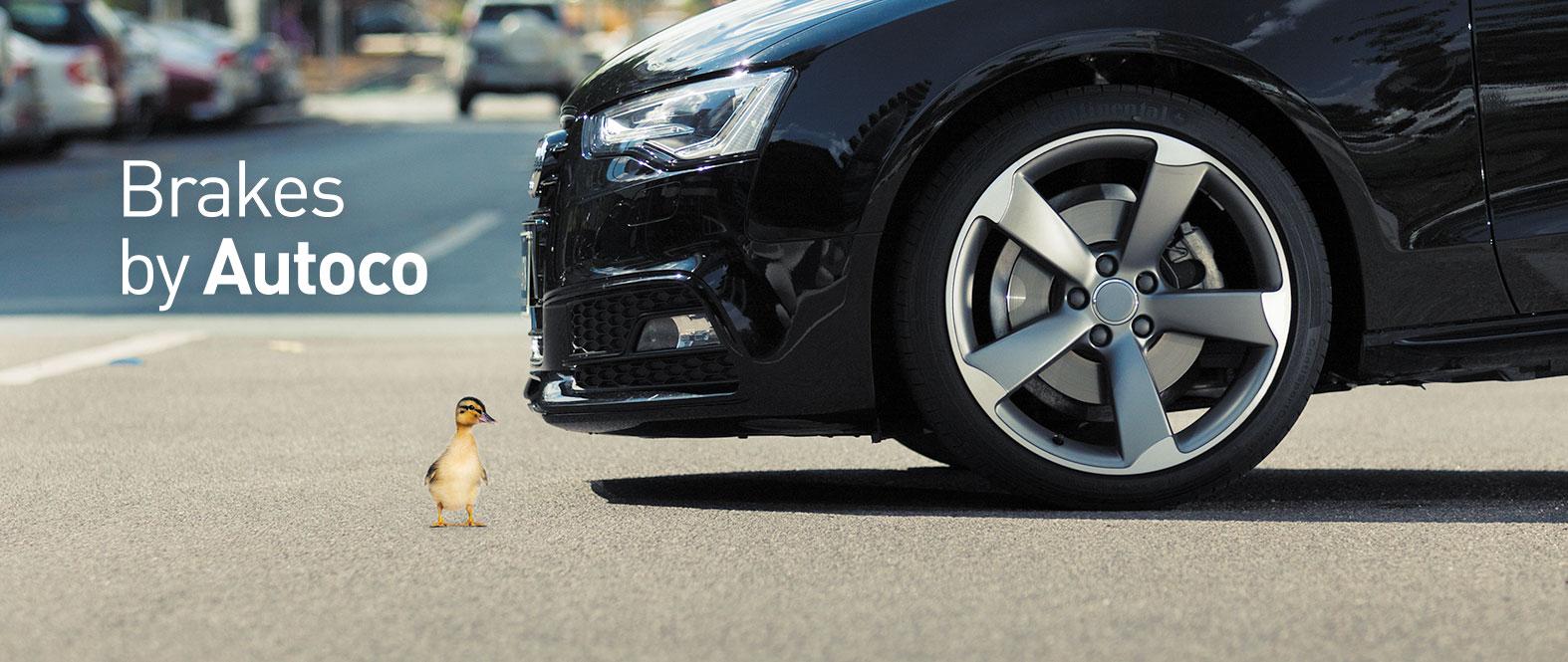 banner-ducky